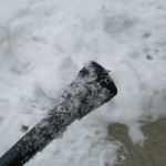 A snowy-tipped cane