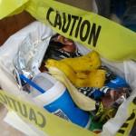 A banana peel.  Will the killing ever stop?