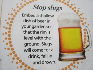 Slug it down!
