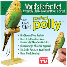 Perfect Polly 2
