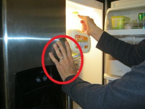 Nice paw-print you leave on the fridge!